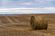 Hay Bale in the Autumn Harvest