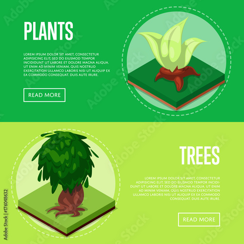 Papiers peints Vert chaux Plants and trees for park design isometric posters. Public parkland zone landscape, outdoor summer natural recreation vector illustration. Decorative plants with green grass 3d elements.