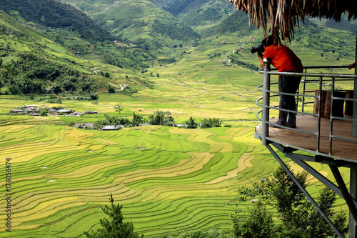 Foto op Aluminium Pistache Rice fields on terraced of Vietnam