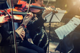 Musicians playing the violin close up. - 176065833