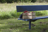 Apples, strawberries and pears in an old wooden crate on a blue bench - 176081066