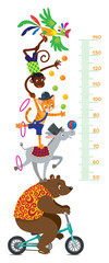 Funny circus animals. Meter wall or height chart © passengerz
