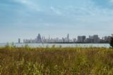 Chicago skyline, USA - 176085690