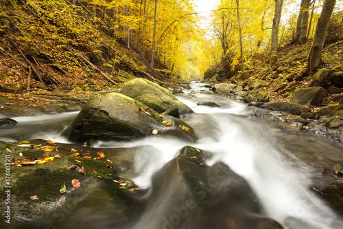 Foto op Plexiglas Herfst Autumn River. Bieszczady, Poland