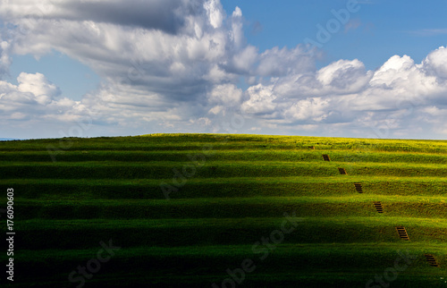 Foto op Aluminium Bleke violet Grazed terraces facing the Danube floodplain
