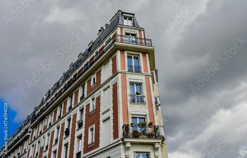 view of the palaces and streets of Paris in France