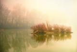 Nice foggy morning - 176098273