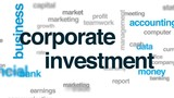 Corporate investment animated word cloud, text design animation. - 176102471