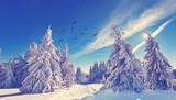sonniger Wintertag im Wald - 176110641