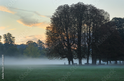 A foggy, autumn dawn in a park. Lyon, France. Poster