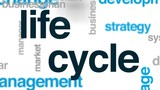 Life cycle animated word cloud, text design animation. - 176114000