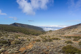 Sky and Forest Tenerife Canary Islands Spain Clouds Mountains Winter Landscape