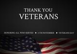 veterans day flag - 176154809