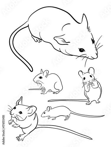 Papiers peints Cartoon draw Mice line art 01. Good use for symbol, logo, web icon, mascot, sign, or any design you want.