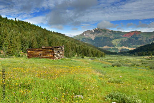 A mountain meadow with a log cabin ruin in the foreground. Poster