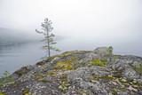 Fog over the Ladoga Lake. Karelia, Russia. - 176161870