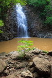 Montezuma waterfall in nature of  Costa Rica