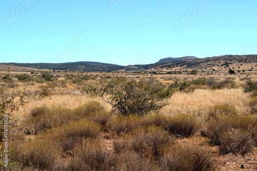 Tuinposter Lichtblauw Arizona Desert