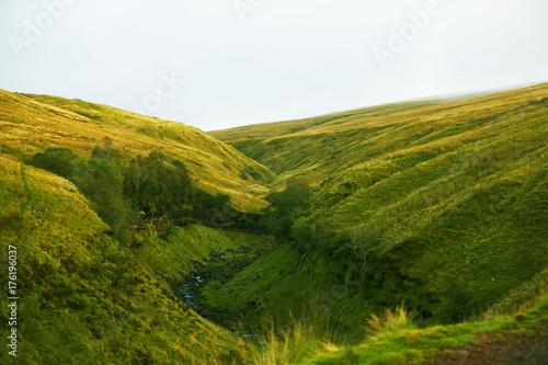 Papiers peints Blanc Welsh nature and wildlife