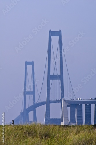 The giant towers of the Great Belt Bridge going from Sealand to Fuen, with grass Poster