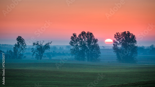 In de dag Koraal Beautiful sunrise at foggy field and sun in summer