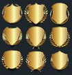 Golden shield retro design vector illustration collection