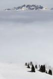 A winter scene - 176241017