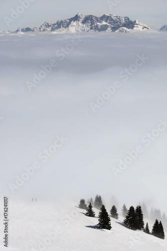Fotobehang Natuur A winter scene