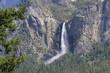 Yosemite Park - 176245880