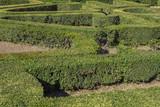 Dettaglio del labirinto di siepi che si trova nel giardino di Villa Lante a Bagnaia, vicino Viterbo, in Italia. - 176266022