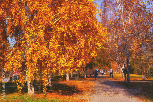 Foto op Canvas Baksteen autumn Park with a footpath on a Sunny day