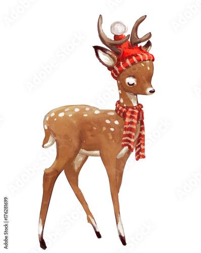 cute watercolor winter deer