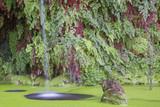 Dettaglio della cascata d'acqua in uno stagno situato a Villa Lante, a Bagnaia vicino Viterbo, in Italia. Sullo sfondo ci sono foglie verdi e rosse. - 176288020