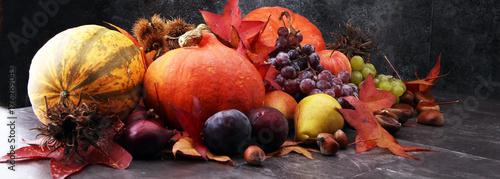 Autumn harvest seasonal fruits and vegetables on grey background.