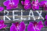Word Relax with Pink Orchid - 176294069