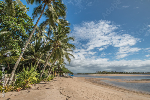 Fotobehang Tropical strand Tropical island beach with coconut trees