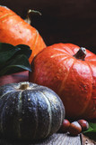Autumn still life with pumpkins, thanksgiving concept, vinage wood background, selective focus - 176338876