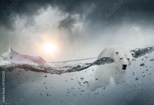 Aluminium Ijsbeer Ours blanc polaire