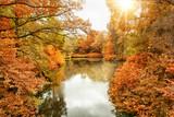 Der Berliner Tiergarten im Herbst