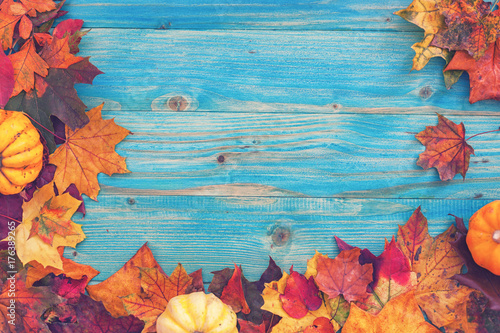 Autumn background with colorful leaves and pumpkins  - 176389265