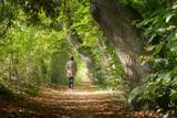 Frau macht einen sonnigen Herbstspaziergang im Wald - 176395660