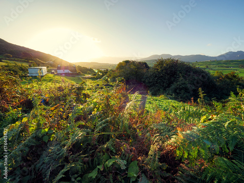 Tuinposter Zwart Early Autumn countryside morning,Northern Ireland