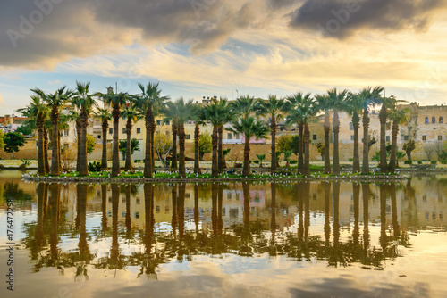 Fotobehang Marokko Jardin Jnan Sbil, Royal Garden in Fes. Morroco