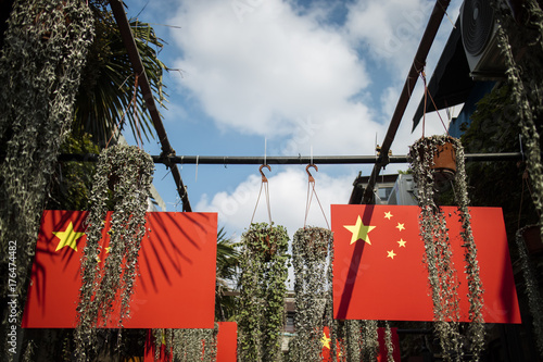 Deurstickers Peking Chinese flag and plant under blue Sky
