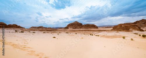 Papiers peints Photos panoramiques Panorama Sand desert Sinai, Egypt, Africa