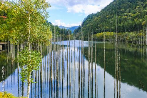 青空と自然湖