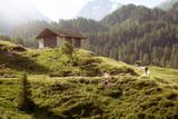 Wanderweg an einer Berghütte