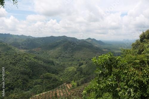 Foto op Canvas Wit landscape
