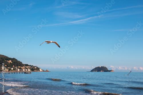 Gallinara island, italy Poster