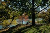 Meditation in Central Park